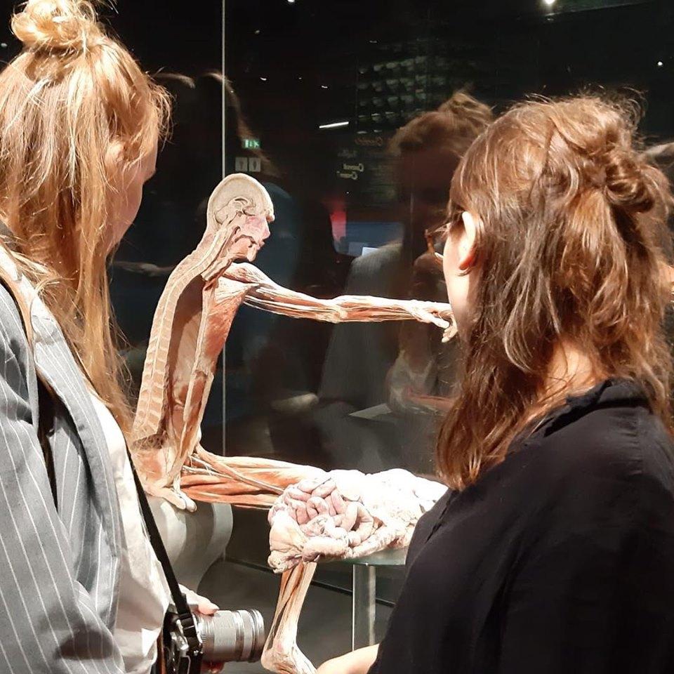Анатомічна виставка Ґунтера фон Гаґенса «Всесвіт тіла» триватиме у Києві до грудня -  - 5d4ddaf94e6ae