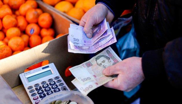 Прожитковий мінімум на 2019 рік проходить оскарження в суді - уряд України, судовий позов, прожитковий мінімум, продукти харчування, підвищення прожиткового мінімуму, Кабмін України, Державний бюджет - 630 360 1457790041 2542