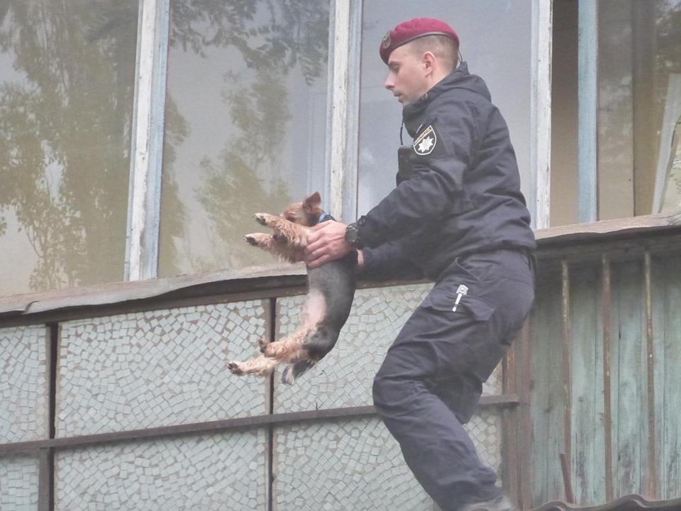 71763880_815257485537006_812804513315422208_n Пожежа у багатоповерхівці Києва: людей масово евакуйовували із квартир