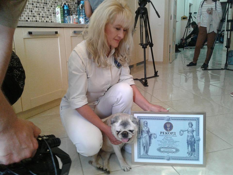 Померла найстаріша собака в Україні -  - 71930871 1391644894334332 1701215062519185408 n