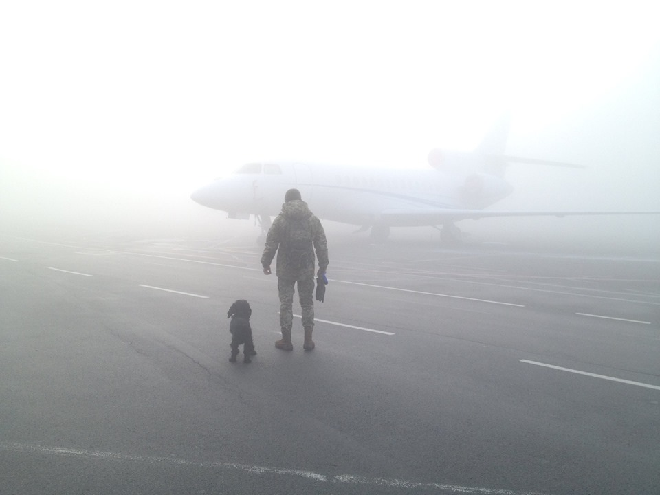 Літаки не літають через туман: аеропорт «Київ» скасовує рейси -  - 72987353 1449753195163311 4411255738857422848 n