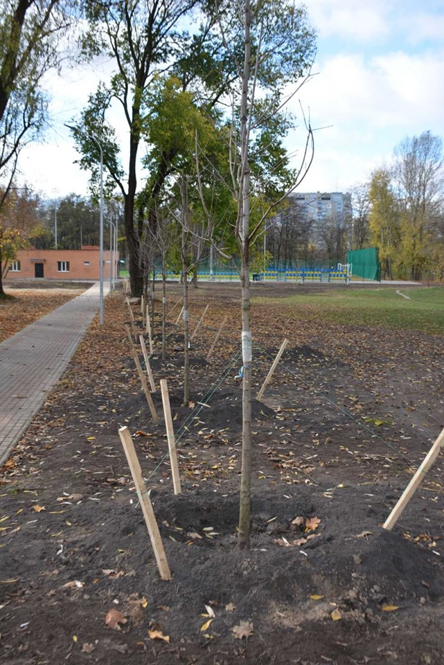 У Броварах висаджують дерева -  - 73233572 402177114027322 6737943027517489152 n