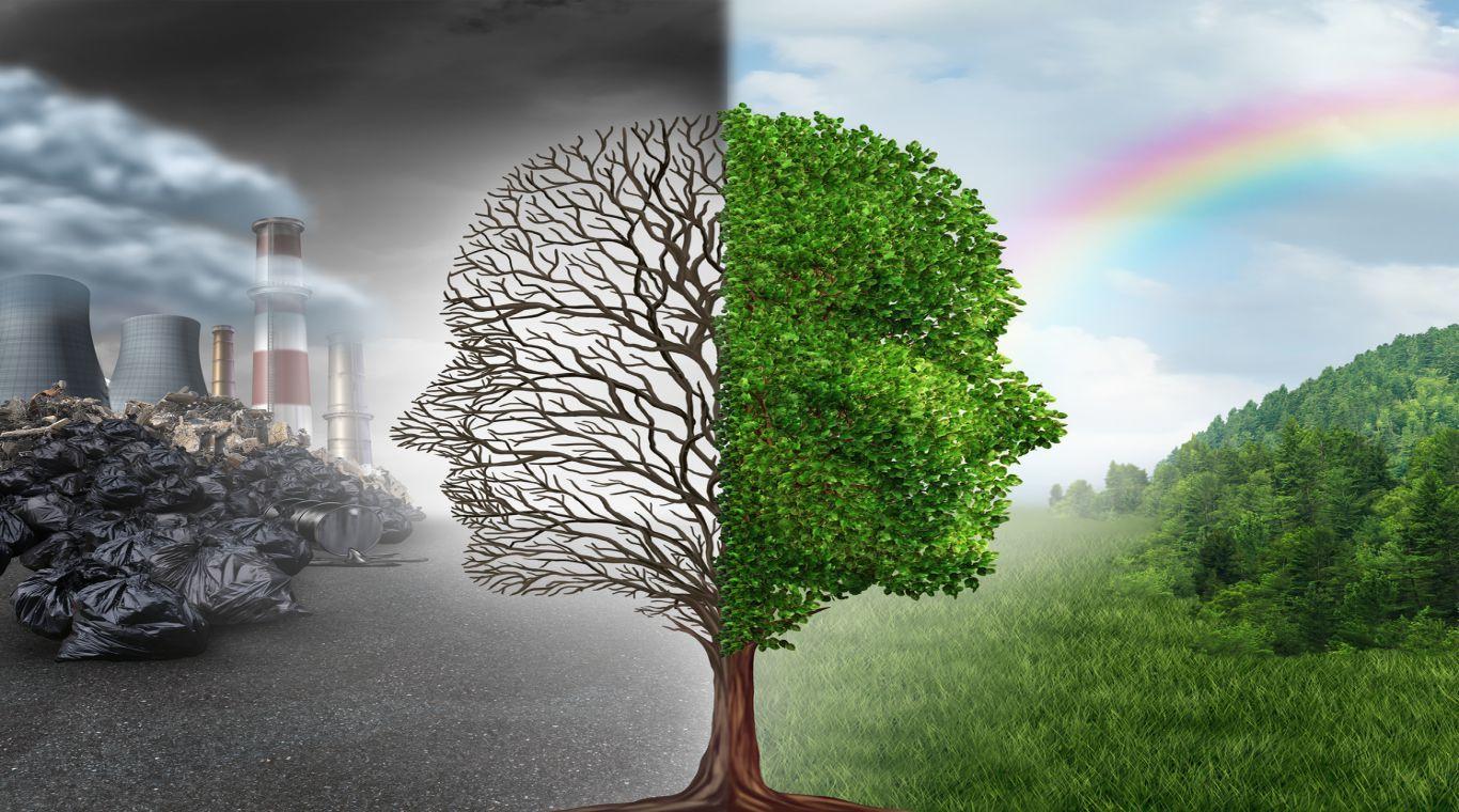 Боярка екологічна: громадські проєкти містян, пов'язані з довкіллям - сонячна енергетика, екологія, громадський проект, Громадський бюджет, Бюджет участі, Боярка - 749