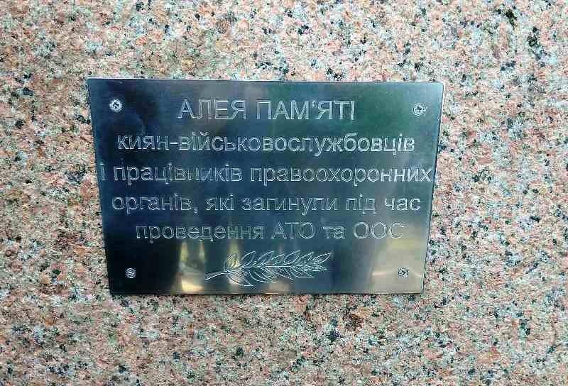 У київському парку на честь загиблих захисників висадили Алею пам'яті -  - 7c88134f1a3e8d8 800x0