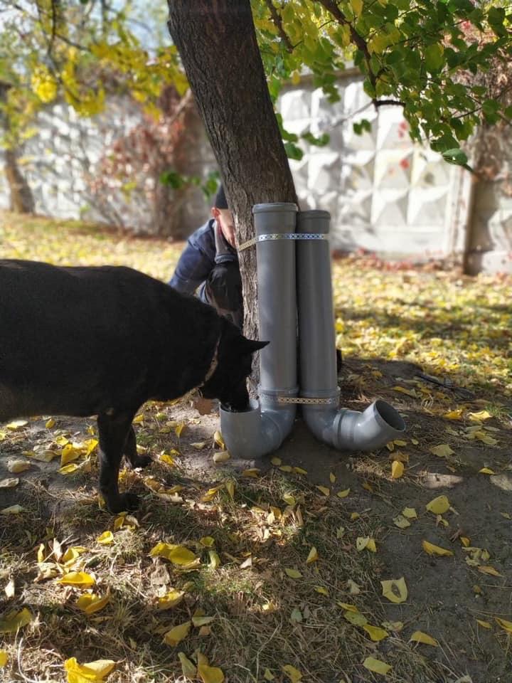 В Українці для безпритульних тварин встановили домівки -  - B16CC9B4 5194 42A1 828E 17DDFA4F87CB