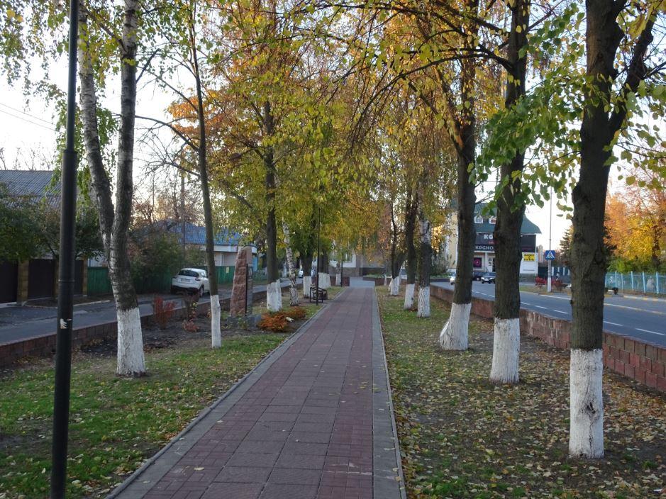 Gost-2019-17 Козацький гостомельський край відсвяткував 525-ліття