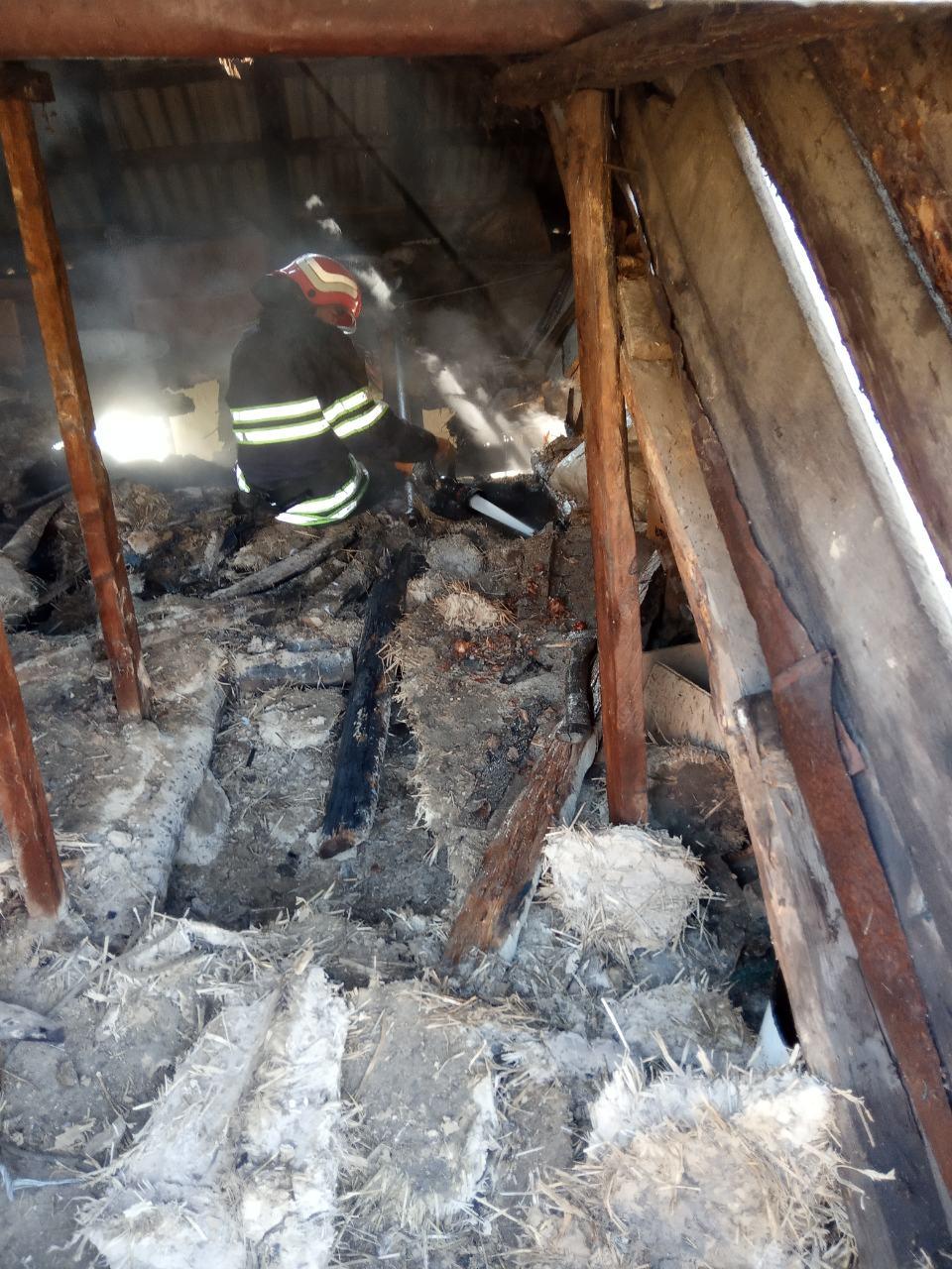 В Богуславі врятовано власницю будинку, в якому сталася пожежа -  - IMG d958935add7e594404d45db372e699f4 V
