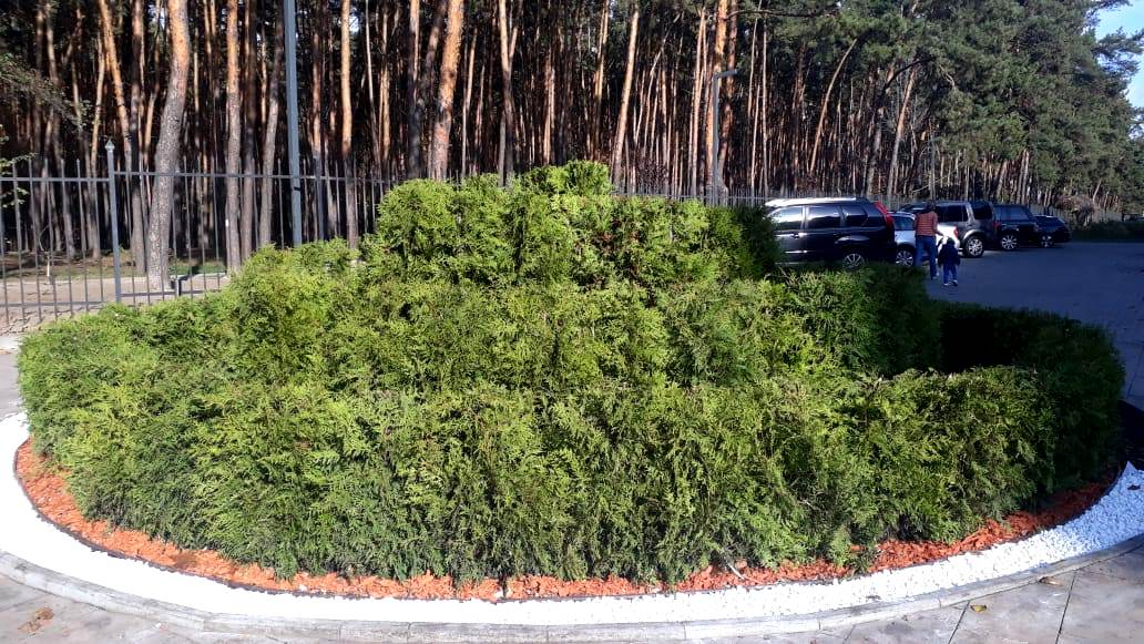 Старий парк Святошинського району реконструюють - реконструкція - sovky