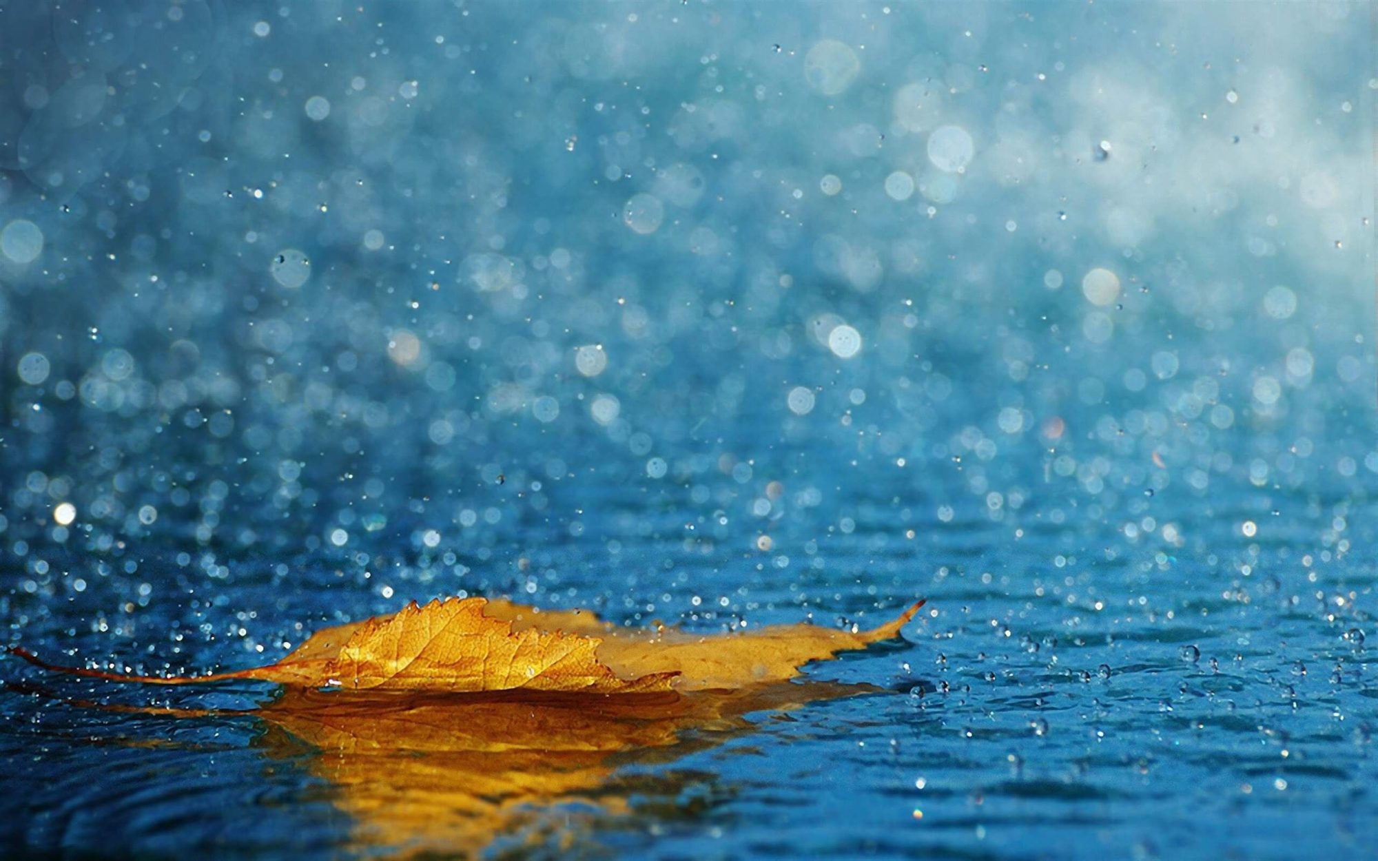 07_pogoda3-2000x1250 7 листопада Україну накриє холодний атмосферний фронт: на Київщині дощі