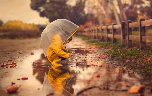 Погода на Київщині: 8 листопада почне потроху теплішати - прогноз погоди, погода - 08 pogoda2