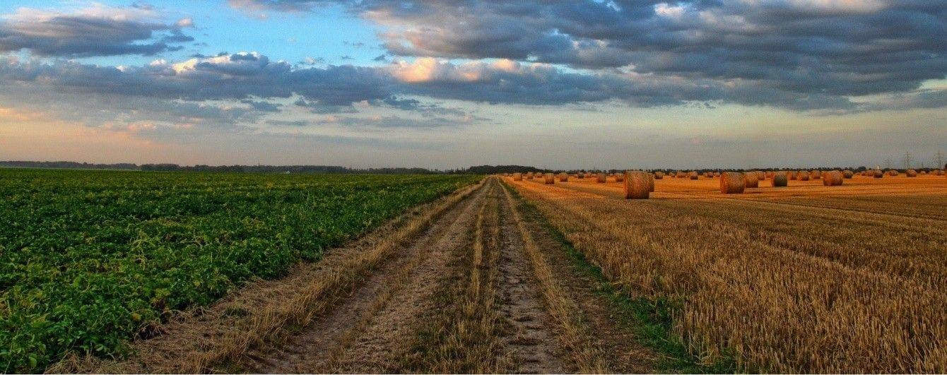 1101_Zemlya Скільки коштуватиме гектар землі в Україні?
