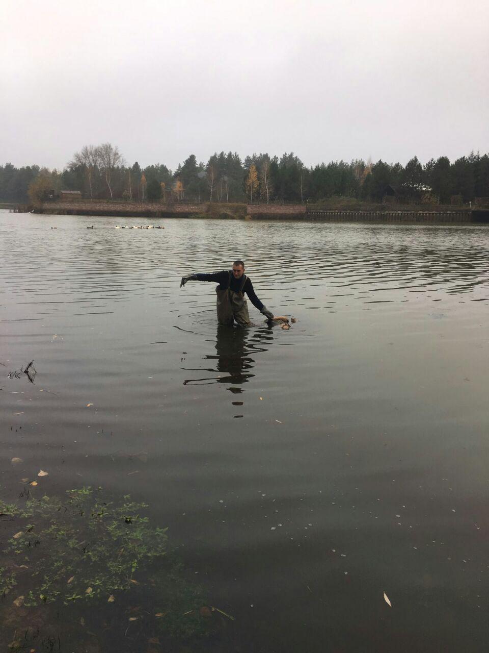 У Вишгородському районі втопився чоловік - рятувальники, потопельник, київщина, Вишгородський район - 1111 Ryatuv