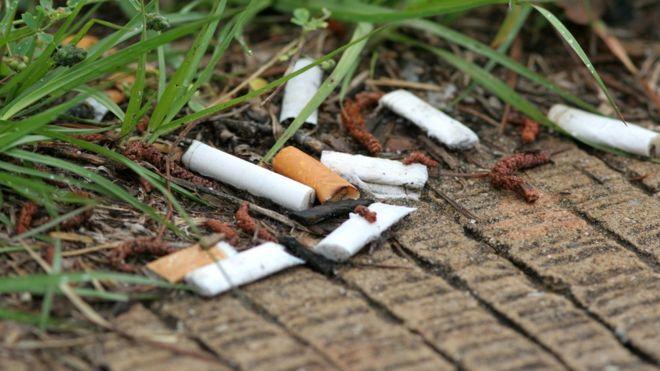 У боротьбі з недопалками на вулицях Нідерланди використають ворон - сміття, Нідерланди - 21 nedopalky