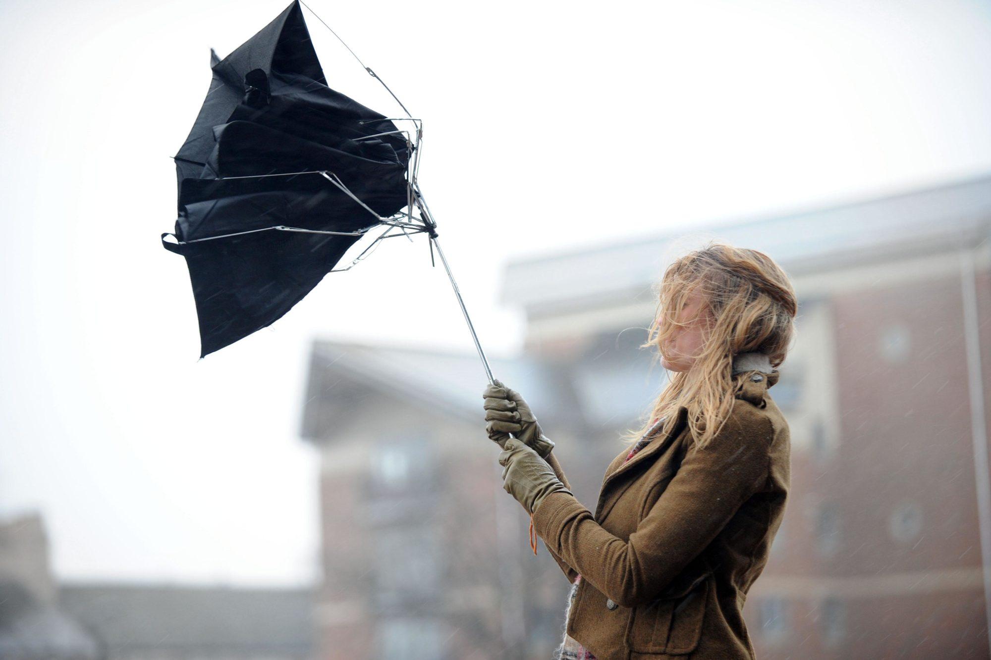 Мешканців Київщини попередили про небезпечні пориви вітру 21.11.2019 - вітер - 21 veter 2000x1333