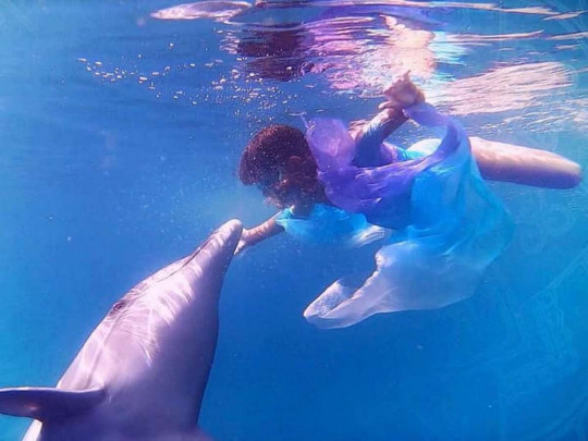 «Танцююча з дельфіном»: короткометражка від родини з Києва несподівано перемогла на кінофестивалі у Голлівуді -  - 325674w540zc0