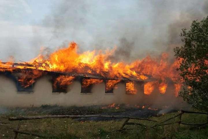 32_main Пожежа у Насташці: на Рокитнянщині горіла стара ферма