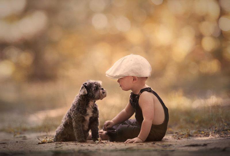 13 листопада - Всесвітній день доброти -  - 3f671471d70532aa48cfe8e124615482