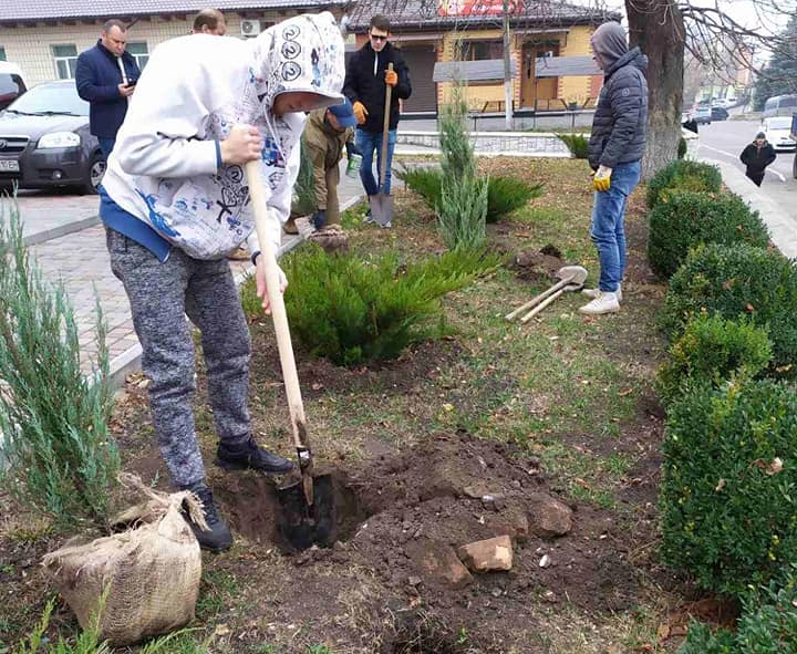 У 5 населених пунктах Київщини висадили понад 800 дерев та кущів -  - 454546