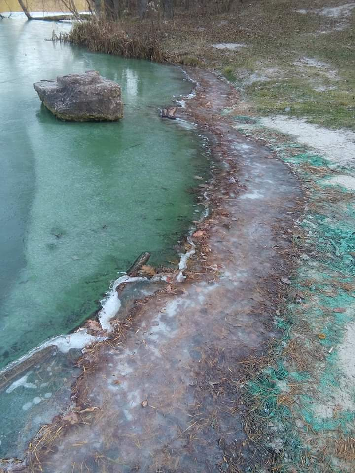 FB_IMG_1574853559048 Озеро у Горенці стало насичено-зеленим