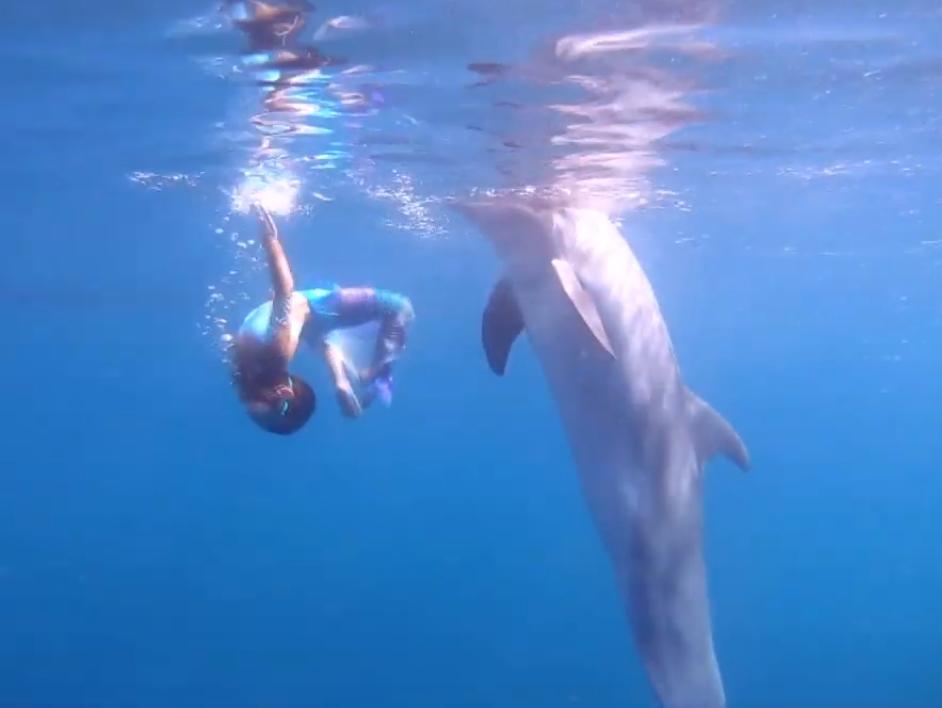 «Танцююча з дельфіном»: короткометражка від родини з Києва несподівано перемогла на кінофестивалі у Голлівуді -  - Screenshot 1 6