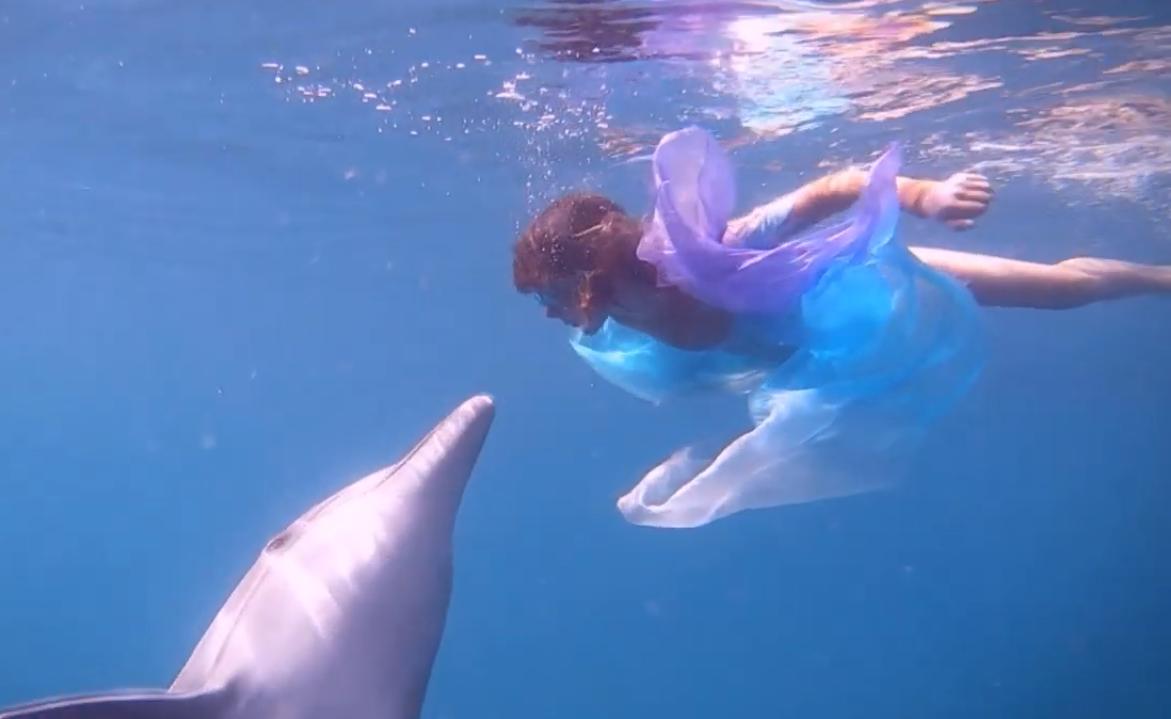 «Танцююча з дельфіном»: короткометражка від родини з Києва несподівано перемогла на кінофестивалі у Голлівуді -  - Screenshot 2 3