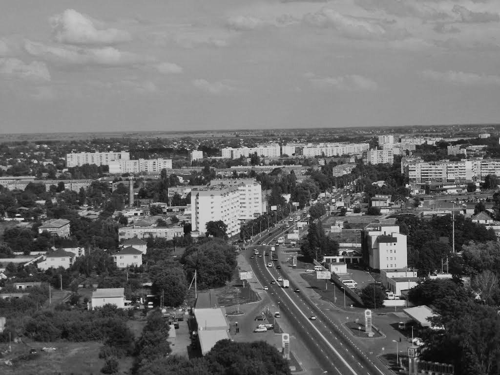 18 смертей у Борисполі за тиждень -  - m. borispily. panorama mista