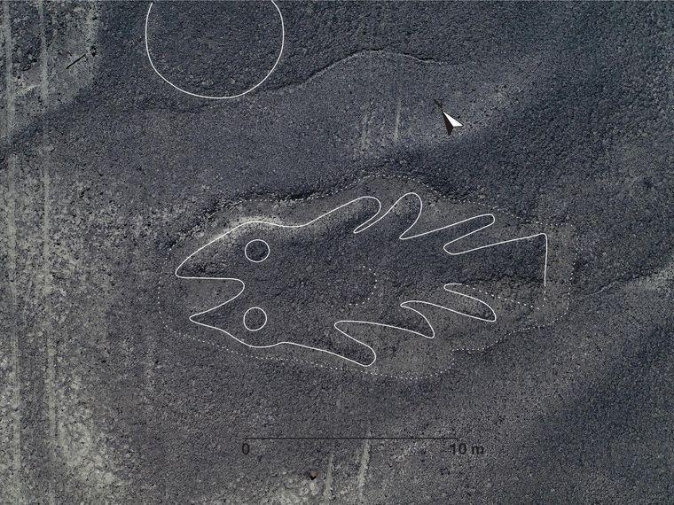 На плато Наска вчені виявили 143 нових малюнки -  - medium 3