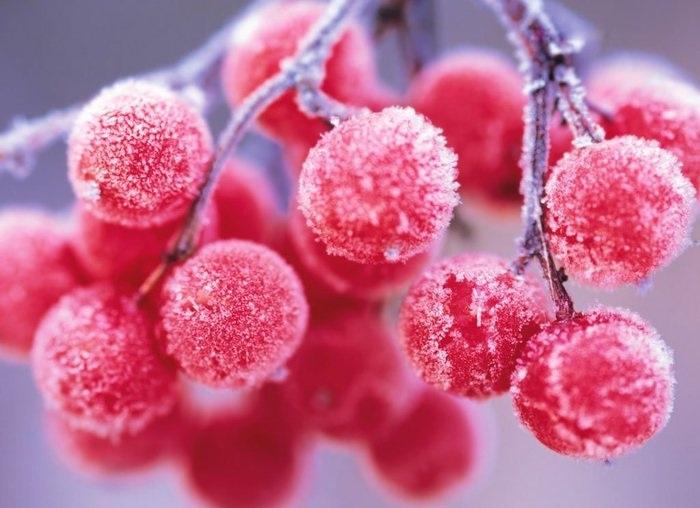 Перший грудневий тиждень в Україні почнеться снігом - прогноз погоди, погода - 02 pogoda3