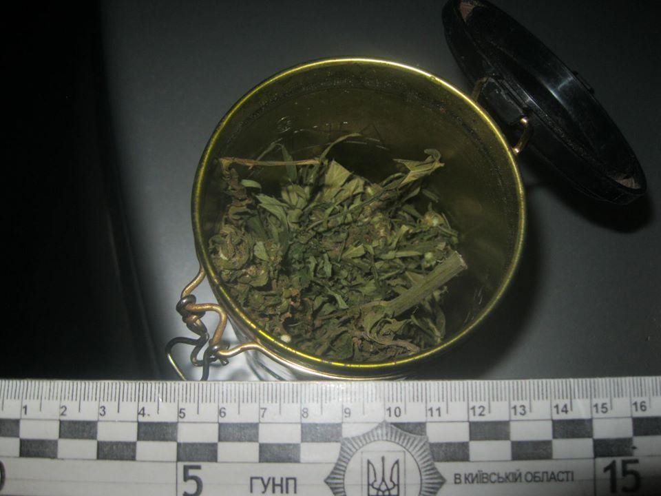 У Димері не переводяться наркотики - Поліція, наркотики, київщина, канабіс, Димер, Вишгородський район - 1227 Dymer1
