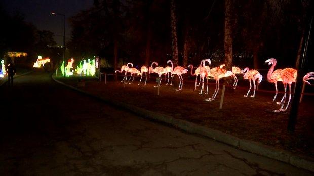 1249031_10408201 У столиці відкрилася виставка китайських ліхтарів