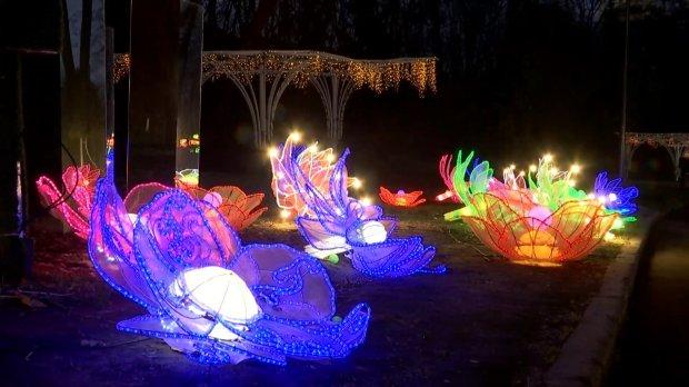 1249031_10408202 У столиці відкрилася виставка китайських ліхтарів