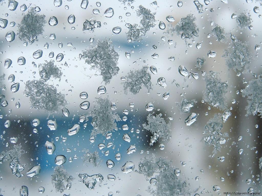 Погода на вихідні: на Київщині дощі та мокрий сніг - погода на вихідних - 14 pogoda3