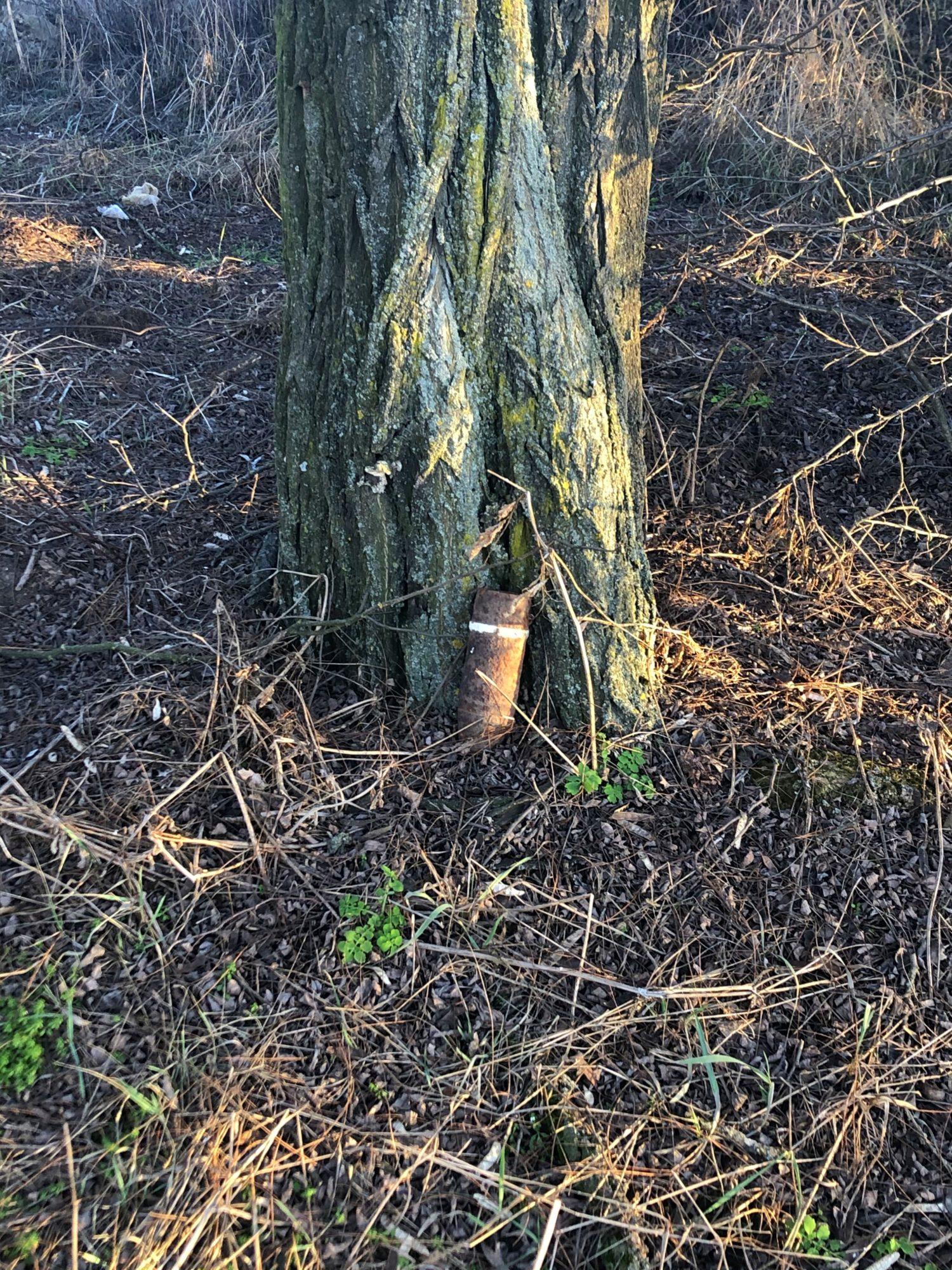 Посеред ліса на Київщині знайшли снаряди часів Другої світової війни - снаряд, вибухонебезпечні предмети, артилерійський снаряд - 18 snaryad 1500x2000