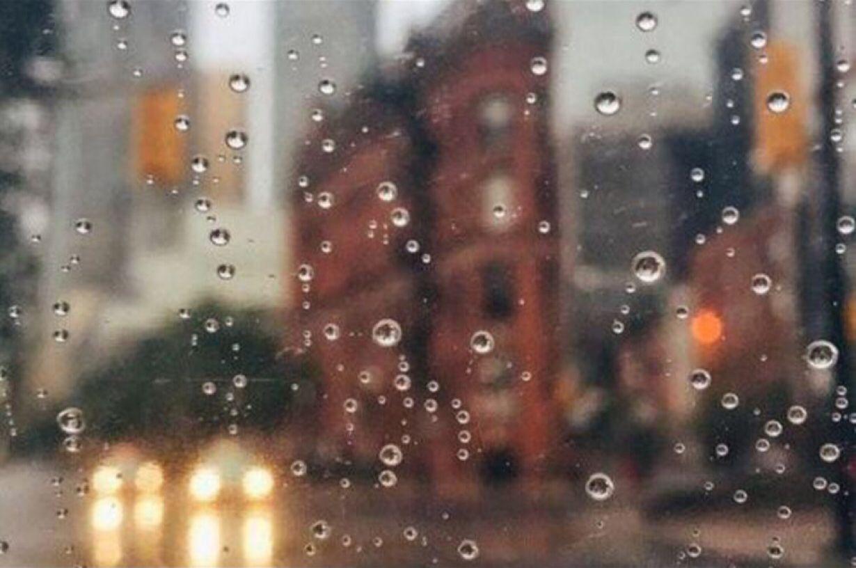 День зимового сонцестояння на Київщині буде з дощем, вітряним, але теплим - погода на вихідні, погода - 22 pogoda3