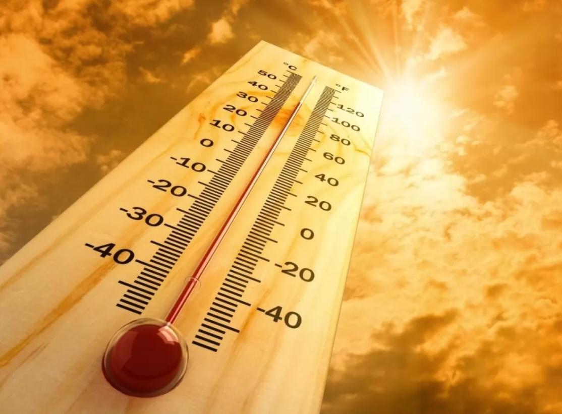 23 грудня у Києві зафіксували +10,2°С: це знову рекорд - температурні рекорди, погода - 24 rekord