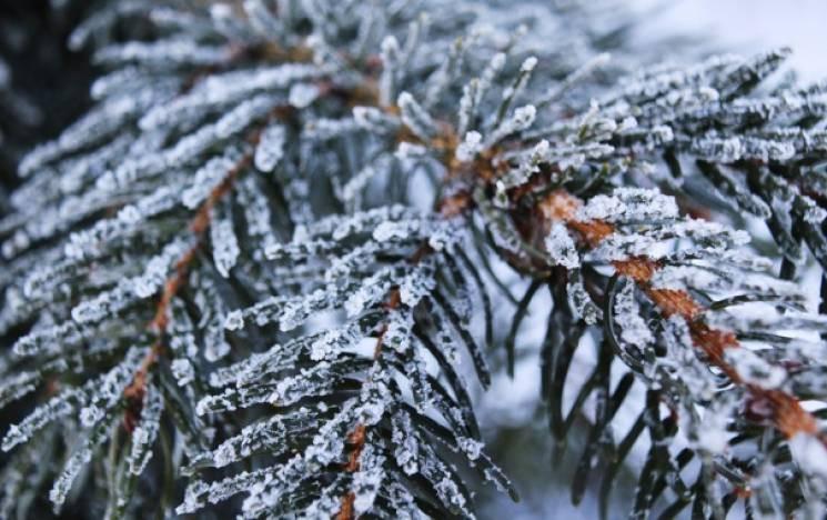 У передноворічні дні на Київщину чекає мороз, ожеледиця та мокрий сніг - прогноз погоди на вихідні, погода на вихідні - 29 pogoda7