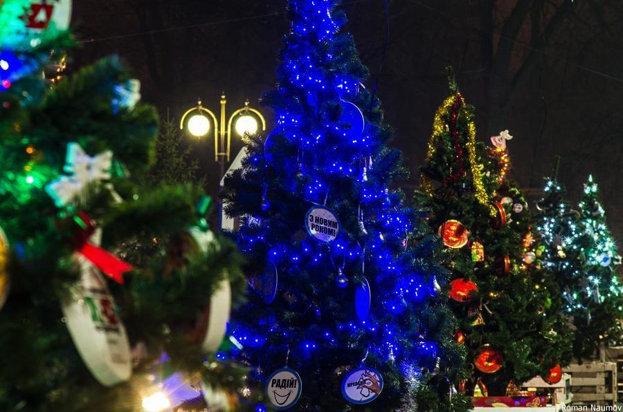 На новорічні свята у фастівському парку хочуть створити «Алею ялинок» - Фастів, міський парк імені Гагаріна, Алея ялинок - 79151772 2698557890225190 5744590381274628096 n