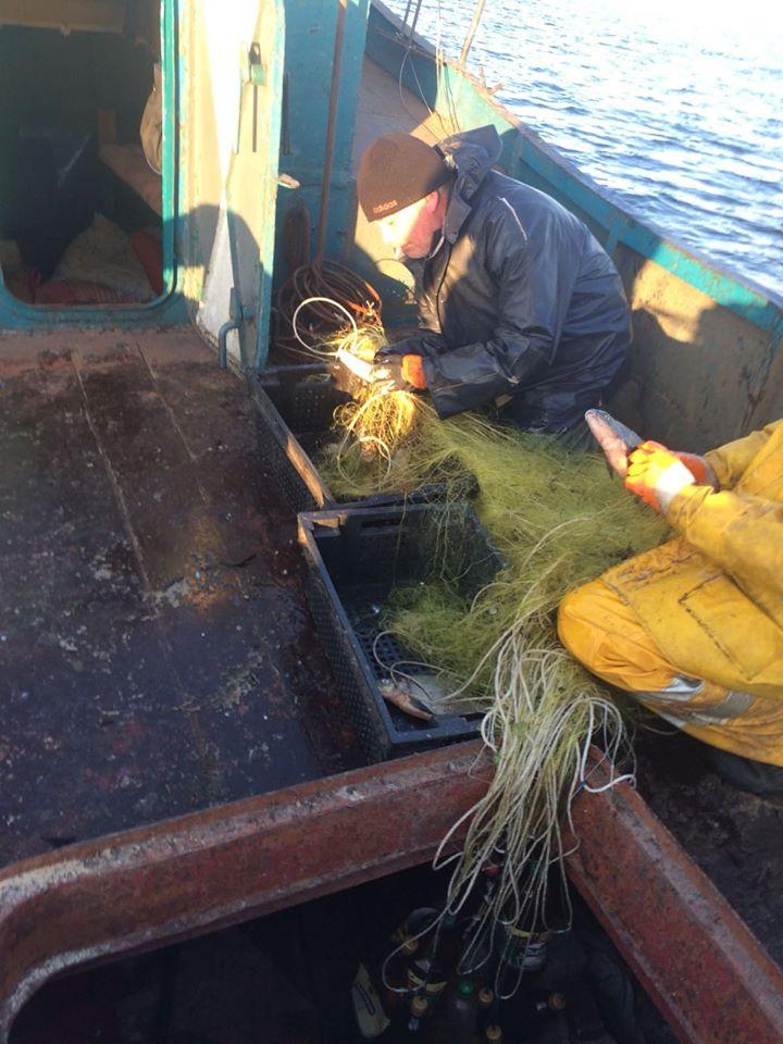 Ловися рибка: на Іванківщині виявлено порушення правил промислового рибальства -  - 79354589 2612314585511717 2119155310730936320 o