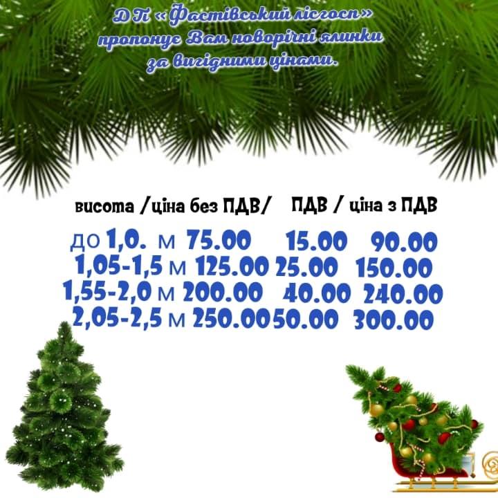 Незабаром у Фастові почнуть продавати новорічні ялинки - Фастівський лісгосп, Фастів, новорічні ялинки - 79806841 2154120111354952 7694066536461369344 n