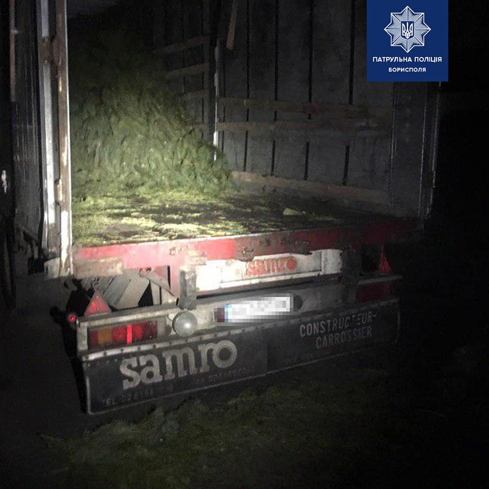 Борисполем їздила вантажівка із нелегальними ялинками -  - 79855411 2574648612756925 8565909446889308160 n