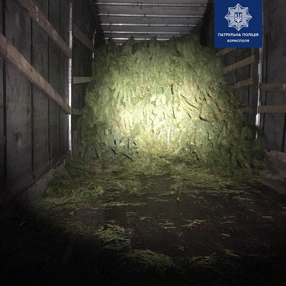 Борисполем їздила вантажівка із нелегальними ялинками -  - 80607898 2574648572756929 7722842301948493824 n