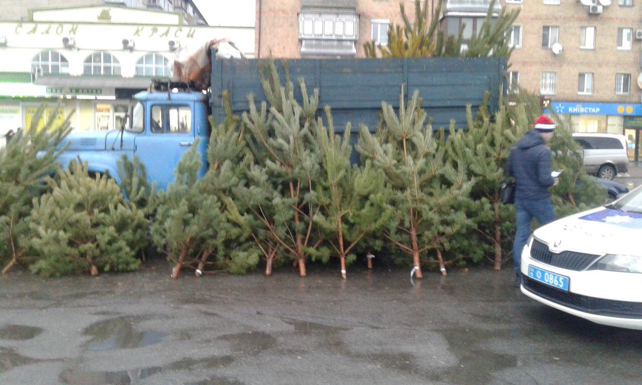 Житель Василькова продавав новорічні дерева з порушенням -  - yzobrazhenye viber 2019 12 23 12 25 14
