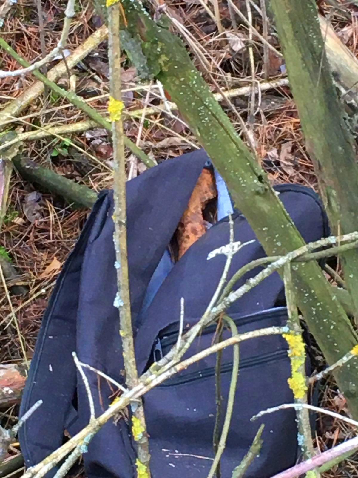 01-2-1 На Київщині в портфелі біля села знайшли артилерійський снаряд