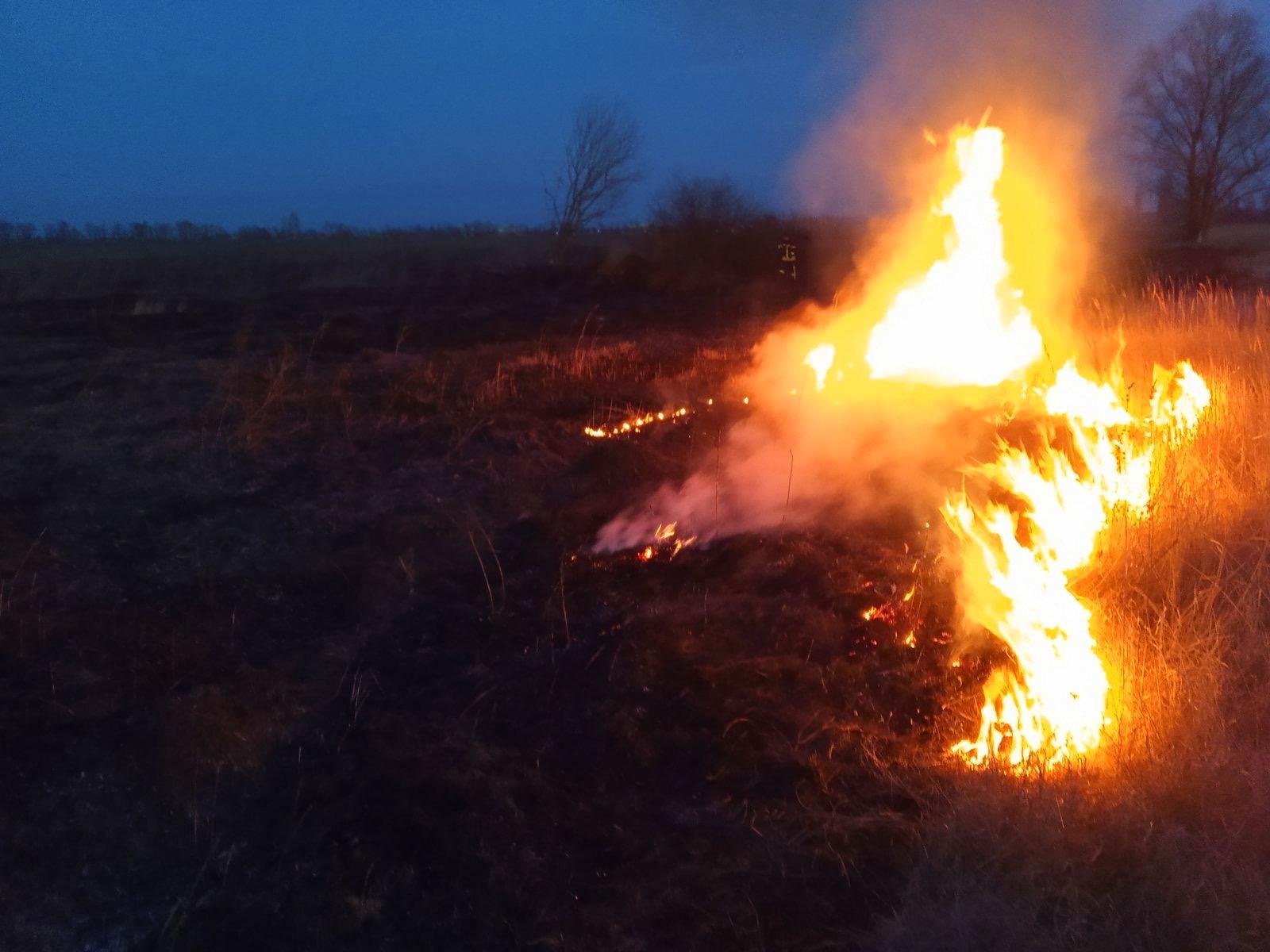 01-3 Безсніжна, тому й пожежна: на Київщині горіли гектари трав'яного настилу (ФОТО)
