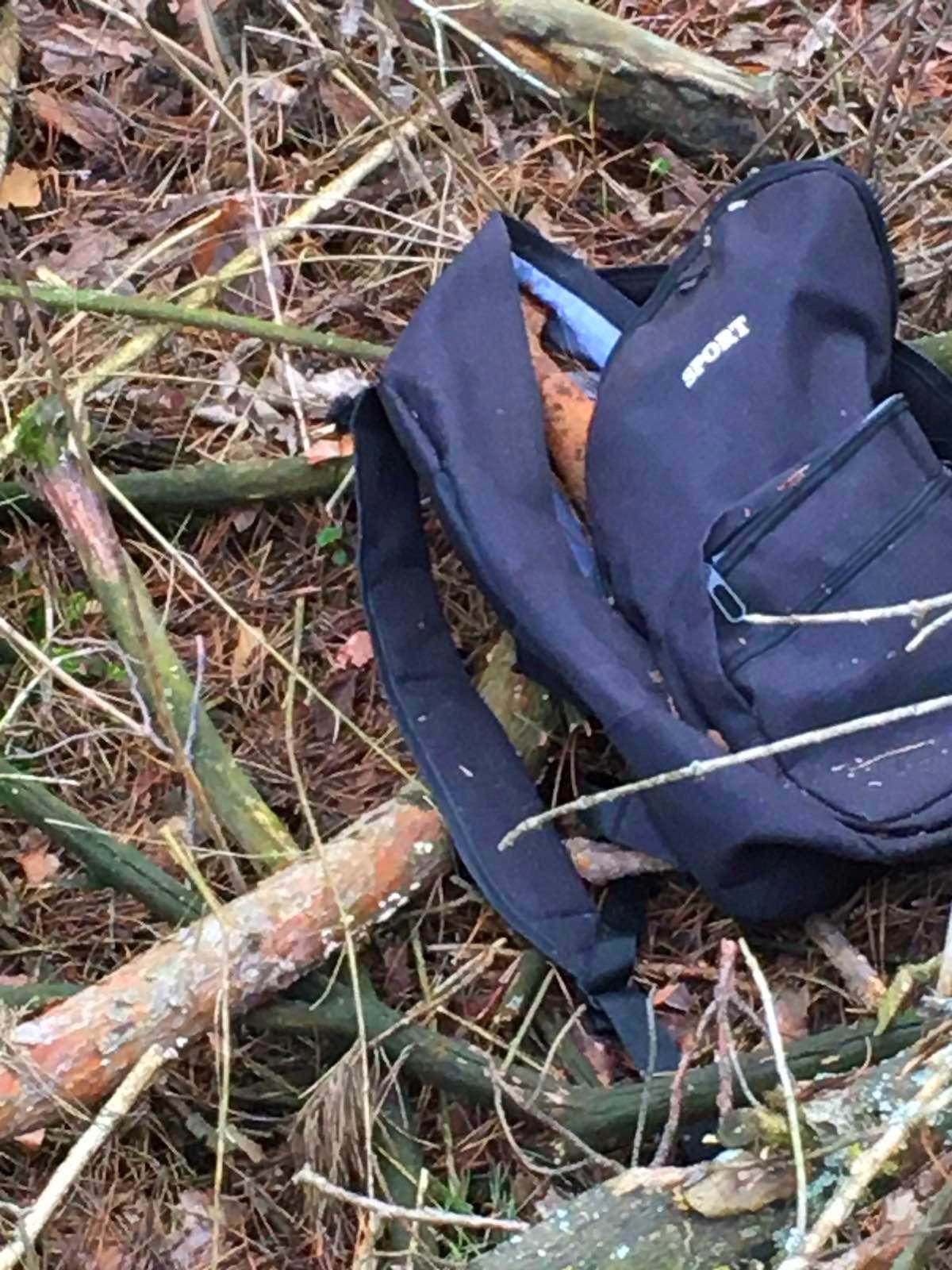 На Київщині в портфелі біля села знайшли артилерійський снаряд - Лубянка, артилерійський снаряд - 02 2