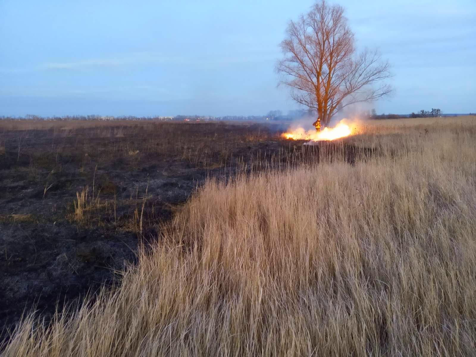 03-1 Безсніжна, тому й пожежна: на Київщині горіли гектари трав'яного настилу (ФОТО)