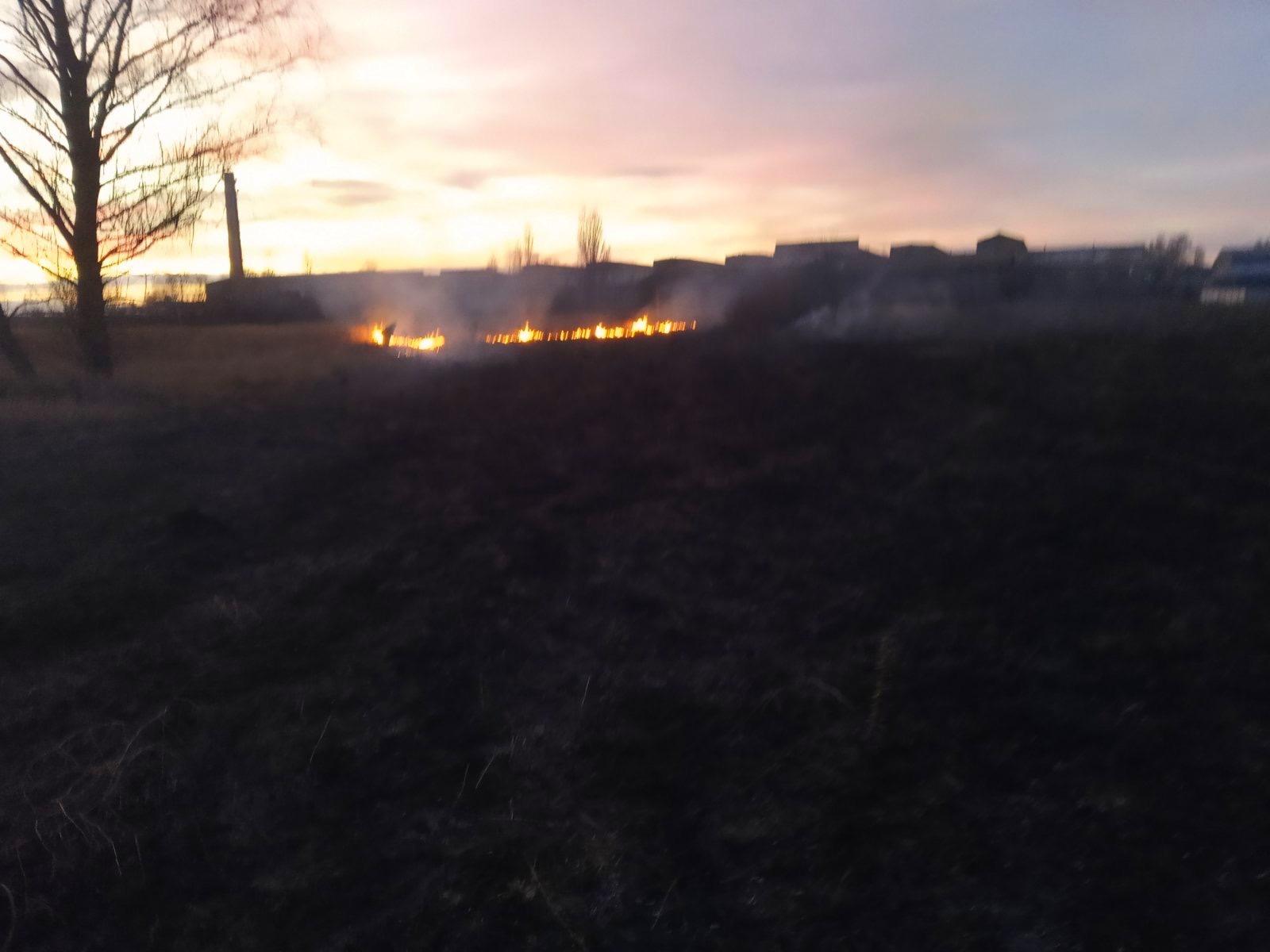 04-1 Безсніжна, тому й пожежна: на Київщині горіли гектари трав'яного настилу (ФОТО)