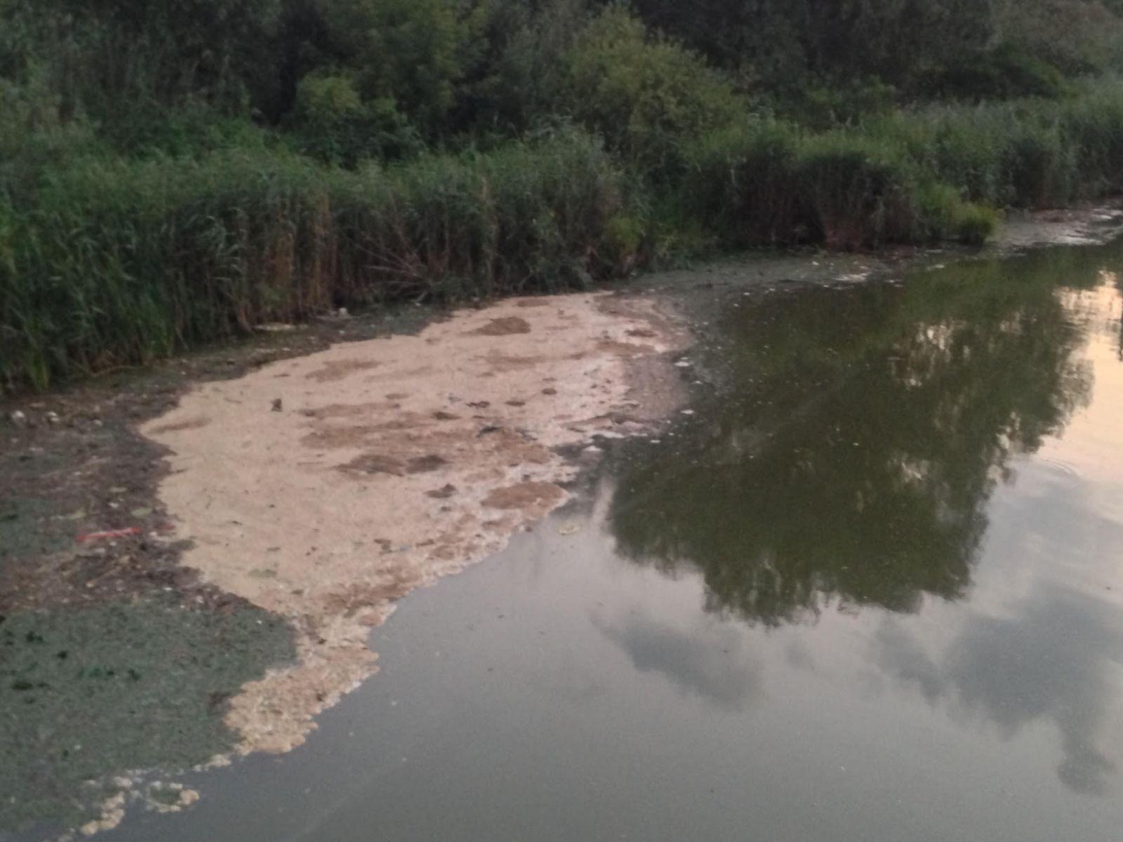 9 га земель водного плеса Обухівщини  вартістю 406 млн гривень повернули державі -  - 11 1