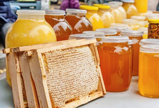 """Скільки """"дьогтю"""": український мед перевірять на якість -  - 113965"""