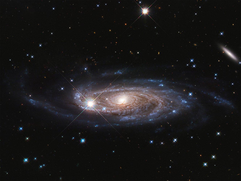Гігантська і фантастично гарна: «Хаббл» отримав знімок найбільшої спіральної галактики - космос, галактика, всесвіт - 11 galaktyka